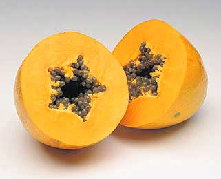 papaya-corte-transversal